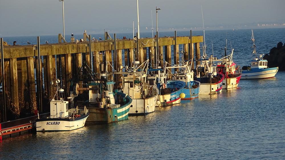 Les pêcheurs sur la nouvelle panne du môle central